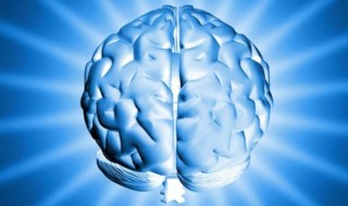 Brain Science For Marketing